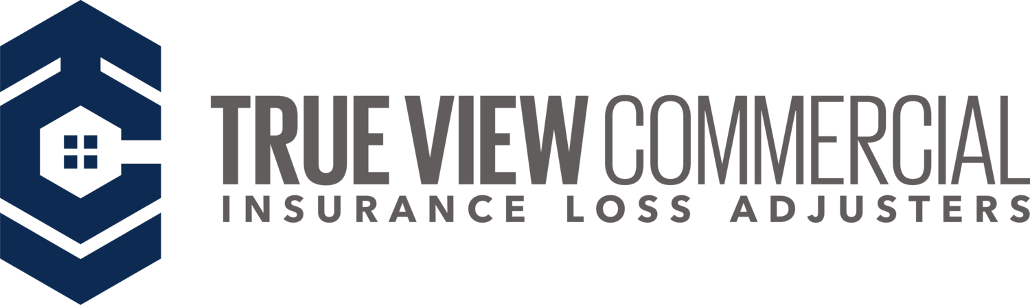 True View Commercial Logo